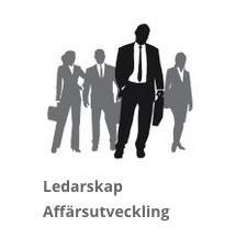 ledarskap-affarsutveckling